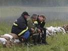 Znavení dobrovolníci nedaleko rakouského města Theiss (4. června 2013)