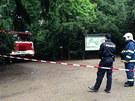 V pr�honick�m parku zabil �enu a jej�ho psa kmen stromu (3. �ervna 2013)