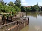 Mlýnský rybník v Říčanech