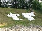 Mlýnský rybník v Říčanech: prosakující hráz bylo třeba utěsnit.