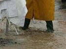 Třetí povodňový stupeň platí na Úhlavě - obec Robčice u Štěnovic. (2. června