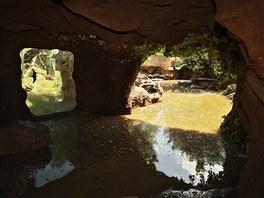 Bezprostřední okolí pavilonu goril je plné bahna. (7. června 2013)