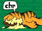 Garfield slaví 35. narozeniny (přebal knihy)