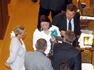 Poslanci přerušili kvůli zásahu policie na Úřadu vlády své jednání ve Sněmovně.