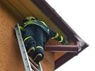 Záchrana rorýse, který se zahákl mezi střešní desky na domě v Ostravě.