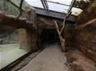 Pavilon goril, vyčištěný prostor pro návštěvníky vysychá (13. 6. 2013)
