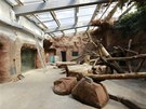 Expozice Pavilonu goril týdne po povodni (13. 6. 2013)