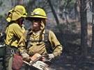 Colorado zasáhly lesní požáry. (14. června 2013)