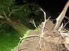 Silný vítr v Krnově trhal střechy a vyvracel stromy. Meteorologové budou na