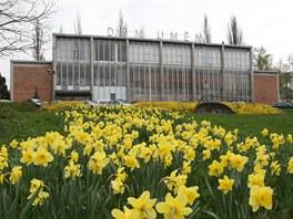 Opuštěný Dům umění ve Zlíně potřebuje opravy v řádech desítek milionů korun.