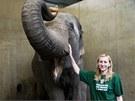 Renata Kucsarová se stala na den chovatelkou slonů v pražské zoo.