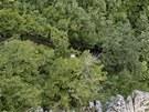 Mezi stromy ve str�i je vid�t dr�ha havarovan�ho autobusu.