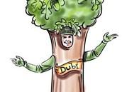 Jedn�m z n�vrh� na maskota Dub� byl i dub.