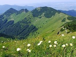 Suchý (1468 m), Biele skaly a Stratenec (1513 m)