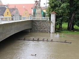 Situace na řece Rokytné v Jaroměřicích nad Rokytnou.