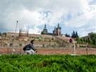 Terasy pod pivovarem v Hradci Králové se po půldruhém roce od otevření