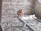 Brněnští skauti pomohli s opravou kostela v ukrajinské Sněhurivce