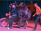 Medvědi na motorce a Jiří Berousek mladší (s černým šátkem na hlavě) nalákali