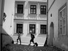 Koz� uli�ka - sn�mek z Letn� fotografick� d�lny Domu d�t� a ml�de�e Olomouc v