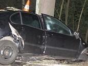 Ve středu 10. července časně ráno mladý řidič nepřežil náraz do stromu u...