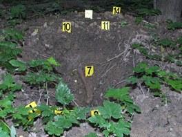 Místo nálezu ostatků zřejmě sovětského vojáka na vrchu Puntík u Nového Jičína.