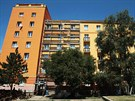 Blok 100 v Mostě je jedním z domů, které štěnice dlouhodobě trápí.