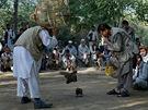 Koroptví zápasy v parku v afghánském Kábulu (5. července 2013)