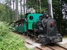 Diváci mohou obdivovat parní lokomotivu, která byla vyrobena vroce 1918