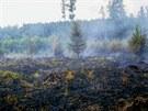 Požár hektaru lesa v Týně nad Bečvou na Přerovsku