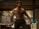 Hugh Jackman ve filmu Wolverine.
