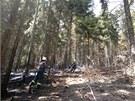Požár lesa u Hynčic, mezi Ruprechtickým Špičákem a Širokým vrchem na Náchodsku