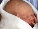 Prvorozený syn prince Williama a Kate (23. července 2013)