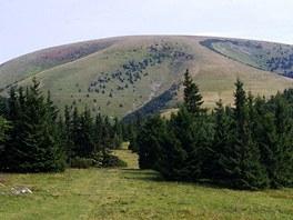 Placatá hora Ploská (1 532 m)