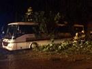 V Zastávce spadl strom na autobus, hasiči museli povolat jeřáb.