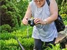 Návštěvníci Jiráskových sadů v Hradci Králové si fotografují zapáchající