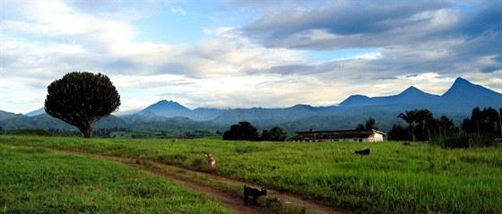 Nejstarší národní park v Africe je v ohrožení. Zkázu mu může přinést ropná...