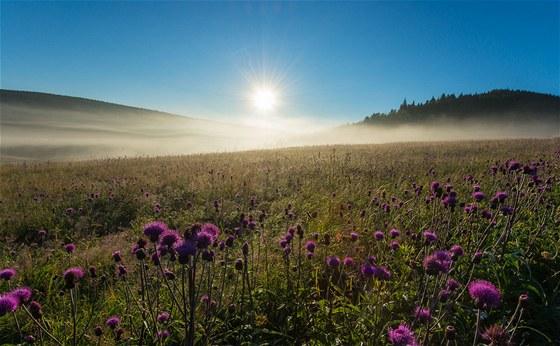 Letní ráno na Jizerce