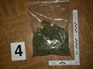 Kriminalistům se podařilo odhalit dvě pěstírny marihuany vrodinných domech...