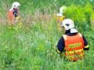 Hasiči prohledávali vysokou trávu v okolí nehody. Ŕidiče nenašli.