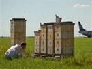 Včelař, včely, Letiště Praha, med, výzkum NEPOUŽÍVAT, DOKUD NEVYJDE REPORTÁŽ