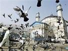 Hejno holub� u me�ity v centru K�bulu. Na �d al-fitr bude pln�.