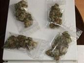 Gram marihuany vy�el na 200 korun.