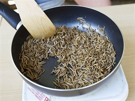 Lid� v zoo ochutn�vali pokrmy p�ipraven� z hmyzu