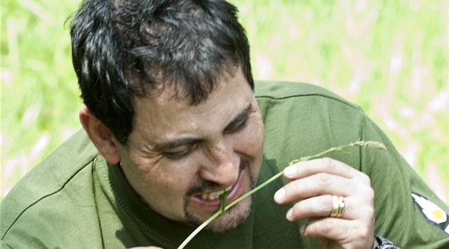 Bylinky, larvy, housenky, mravenci. I tahle potrava vám v p�írod� umo�ní