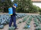 Zvon pro selektivní aplikaci herbicidu