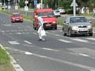 Čimická ulice v Bohnicích: Nedávno odstraněné nové vodorovné značení se mísí s...