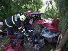 P�i v�n� dopravn� nehod� u Holubic se zranilo p�t lid�.