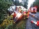 Kamion nalo�en� potravinami skon�il na Brunt�lsku ve strom�. (10. srpna 2013)