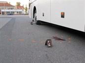 Muže srazil autobus levou přední částí a přejel mu ruku.