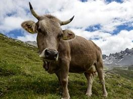 Na pomezí Swiss National Parku